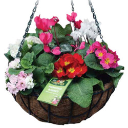 Wire Hanging Basket with Coco Liner - 14inches