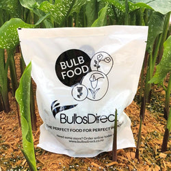Bulb Food - Fertilizer 1kg or 2kg