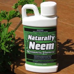Natural Insecticide - Naturally Neem 200mls (makes 100 Litres)