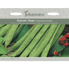 Runner Bean Polestar (Stringless)