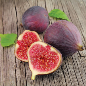 Fig (Ficus) Brown Turkey 4L container