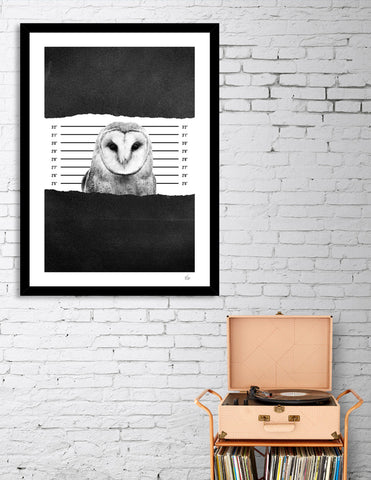 BLACK & WHITE ANIMAL CANVAS ART _humiliation_owl
