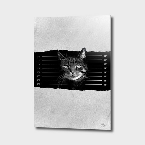 BLACK & WHITE ANIMAL CANVAS ART_cat-mugshot