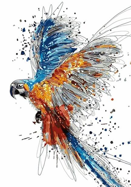 Colors Splashing Parrot