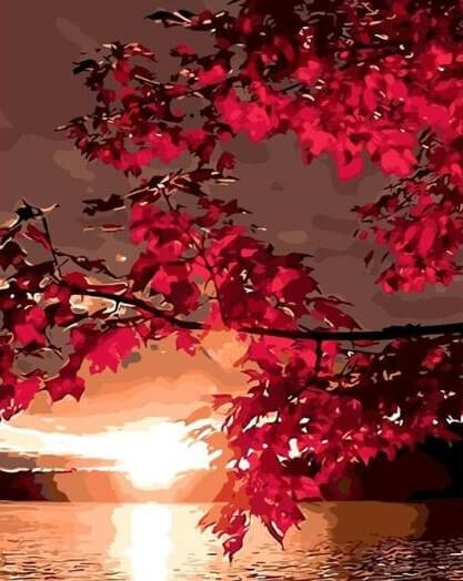 Maple Leaves & Sunset