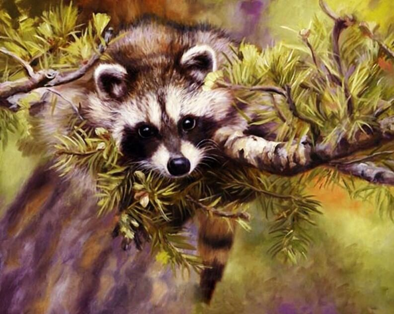Raccoon Paint by Numbers Kit