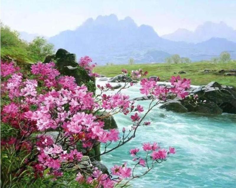Beautiful Colors, River and Flowers Painting - DIY with Painting Kit