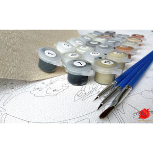 Paint By Numbers - Amazing Painting Kit