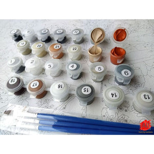 Paint By Numbers - Best Paint By Numbers Kit For Adults