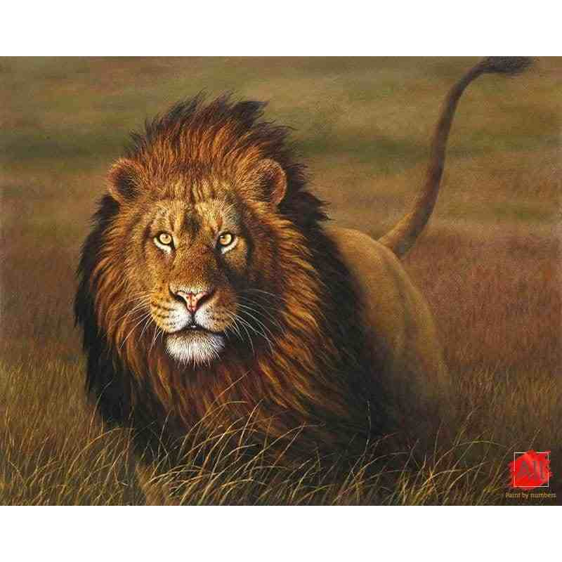 lion paint by numbers