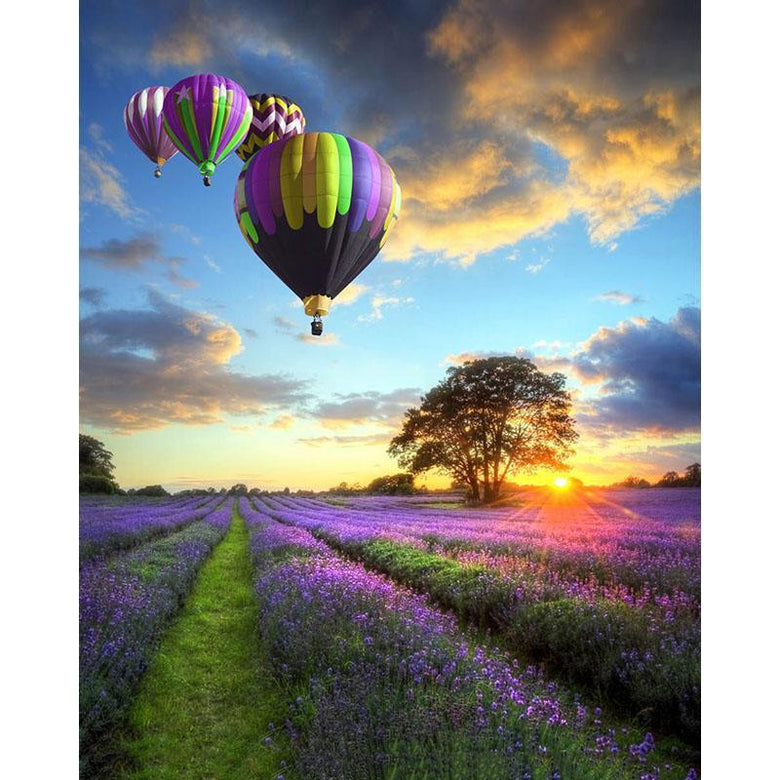 Sunset, Beautiful Balloons over Purple Fields