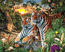 Load image into Gallery viewer, Tigers Paint by Numbers Kit