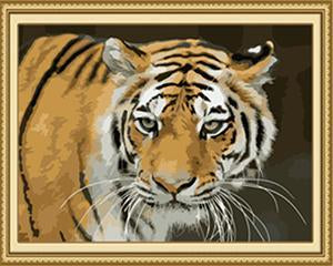 24 Stunning Animal unframed and Framed