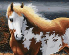 Load image into Gallery viewer, elegant horse