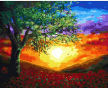 Load image into Gallery viewer, Sunset Paint by Numbers