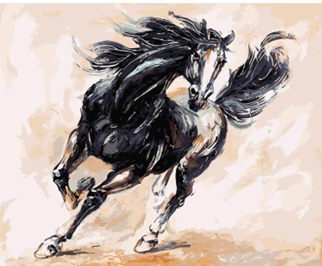 A Black Horse Running Fast