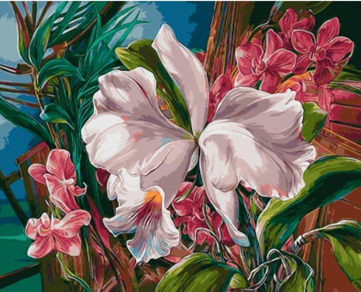 White and Pink Lilly