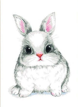 Load image into Gallery viewer, Rabbit