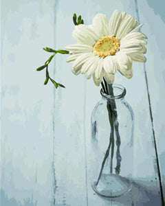 A White Daisy in a Glass Bottle