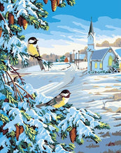 Load image into Gallery viewer, Snow & Birds Paint By Numbers Kit