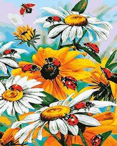 Yellow & White Flowers with Lady Birds