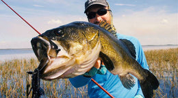 3 Underrated Bass Baits to Catch Winter Fish