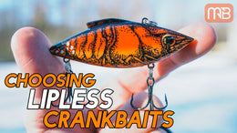 Choosing Lipless Crankbaits (Best Colors and Baits)