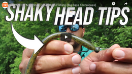 How to Fish a Mag-Shaky Head to Help You Catch Bigger Bass