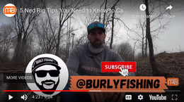 5 Ned Rig Tips You Need to Know to Catch Bigger Bass