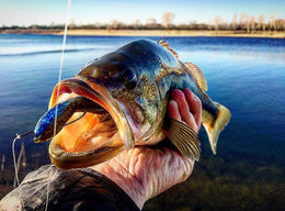 Seasonal Fishing Tackle Prep Tips To Avoid The Winter Blues