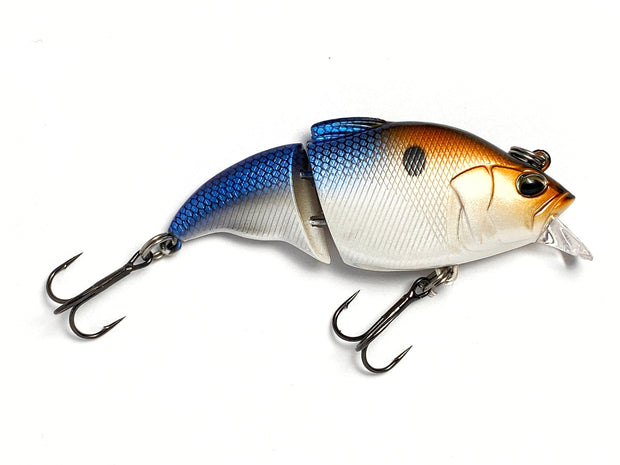Limited Edition Swimbait (5 pack)