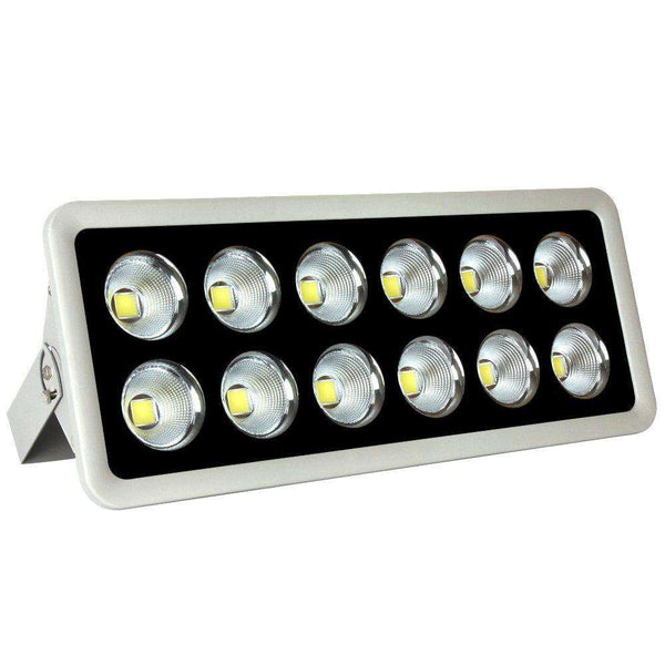 Flood Light 600w