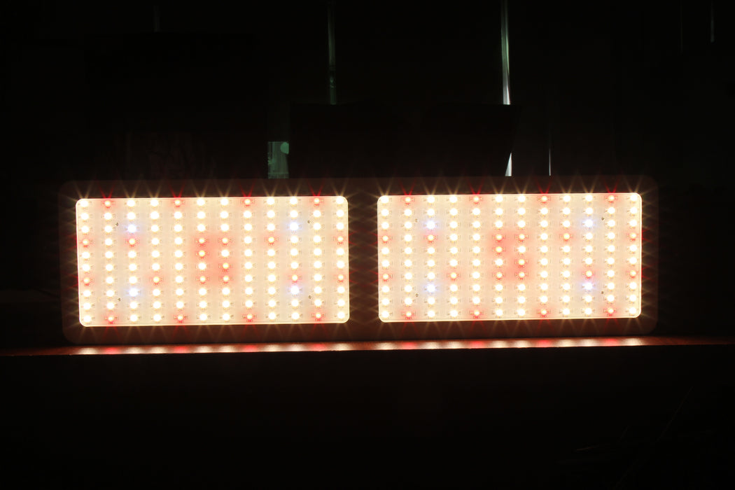 M Series - 2400 Plus (White light available) (For commercial)