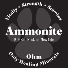 Load image into Gallery viewer, K-9 Ammonite • Bed Rock