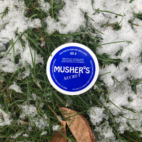 Musher's Secret Paw Wax protects against snow, ice, and road salt