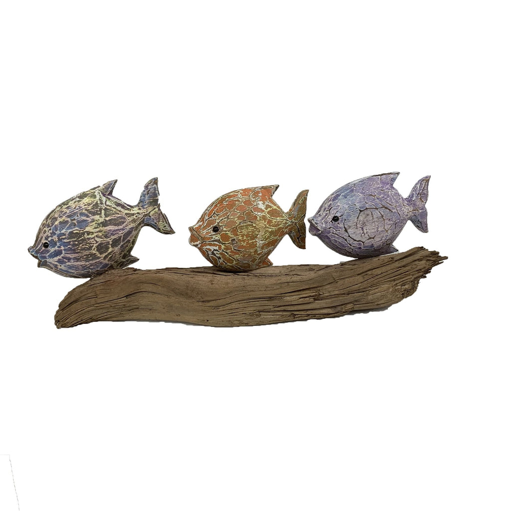 3 Colourful Fish Models on Driftwood