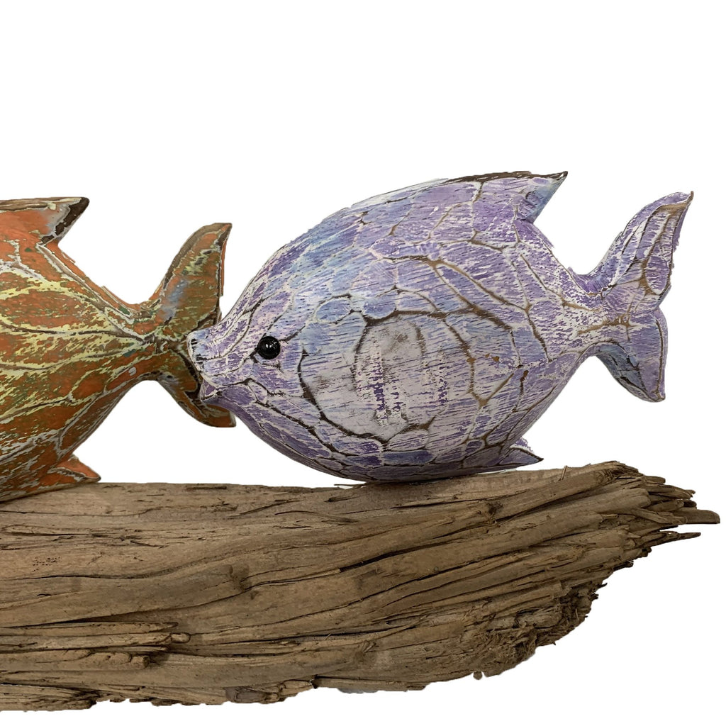 Violet Fish Model on Driftwood