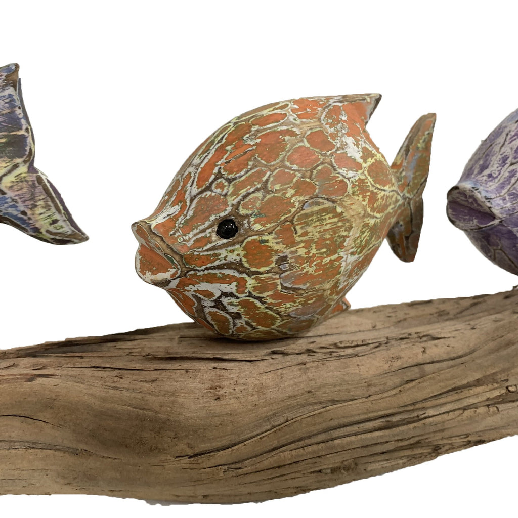 Orange Fish Model on Driftwood