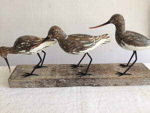 3 Godwits on a stand