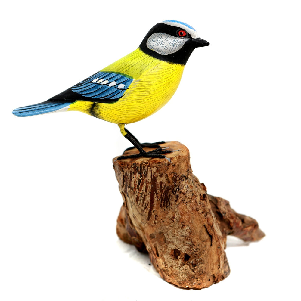 A Blue tit model on Gamal Root