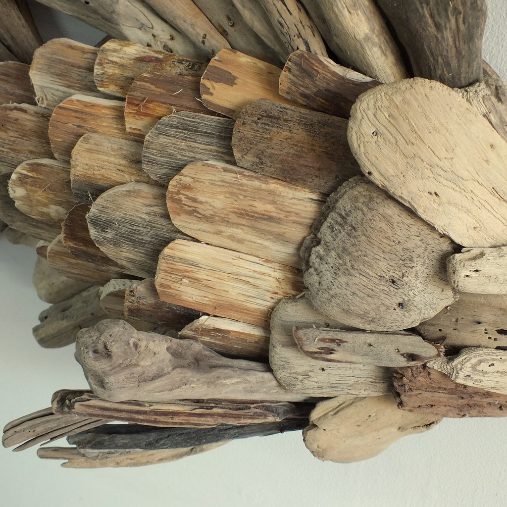 Close up of the driftwood fish