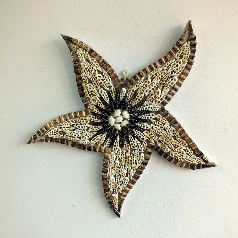 A starfish ornament hanging off the wall