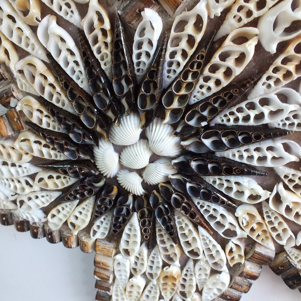 Load image into Gallery viewer, A starfish ornament handmade from wood and sea shells from Bali