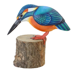 Kingfisher Model