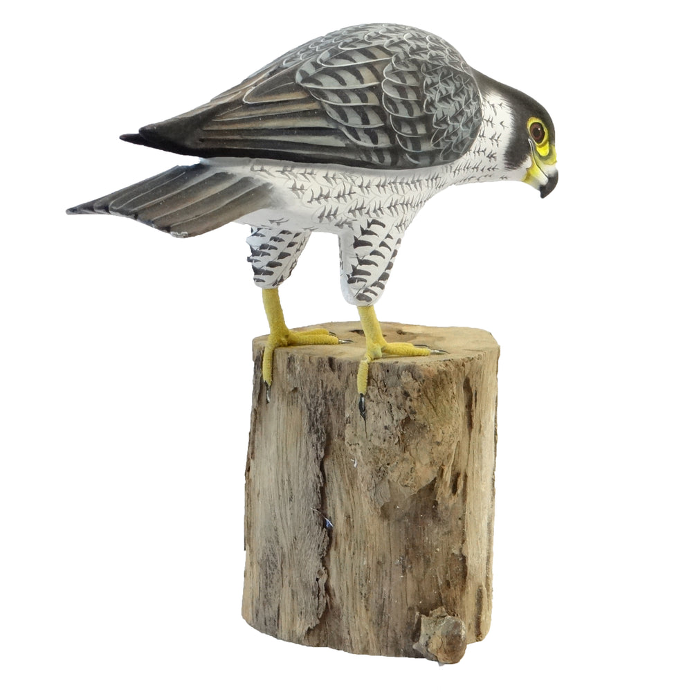 Load image into Gallery viewer, Peregrine Falcon Bird Model
