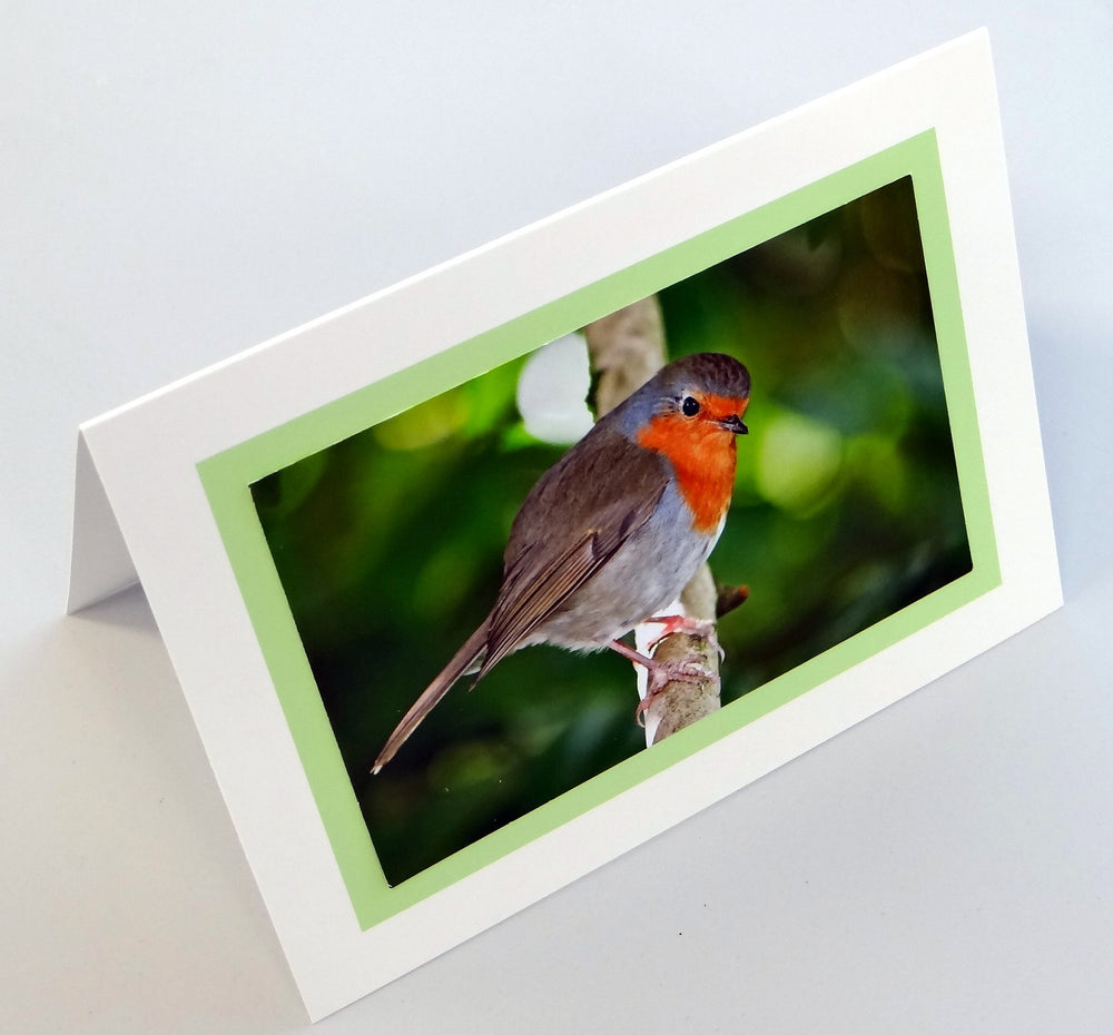 Load image into Gallery viewer, Robin Card