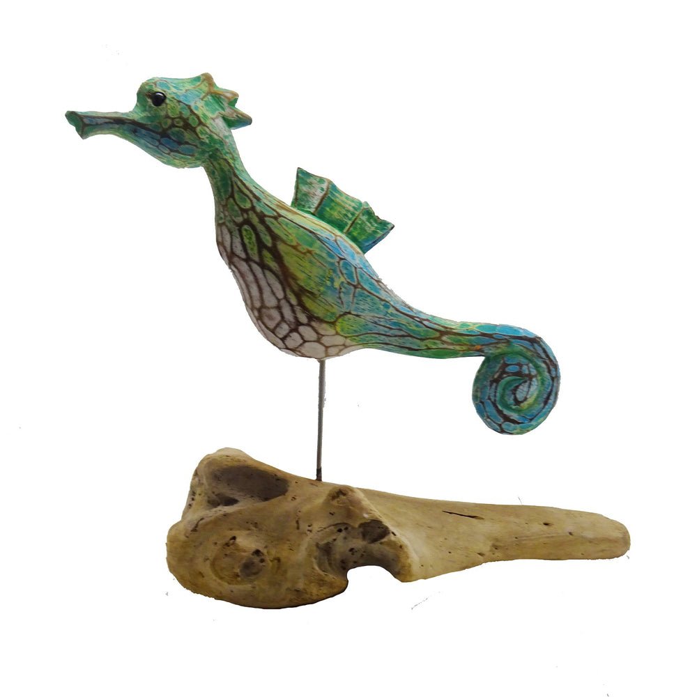 Seahorse on Driftwood