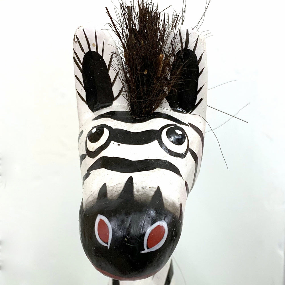 Comical Zebra