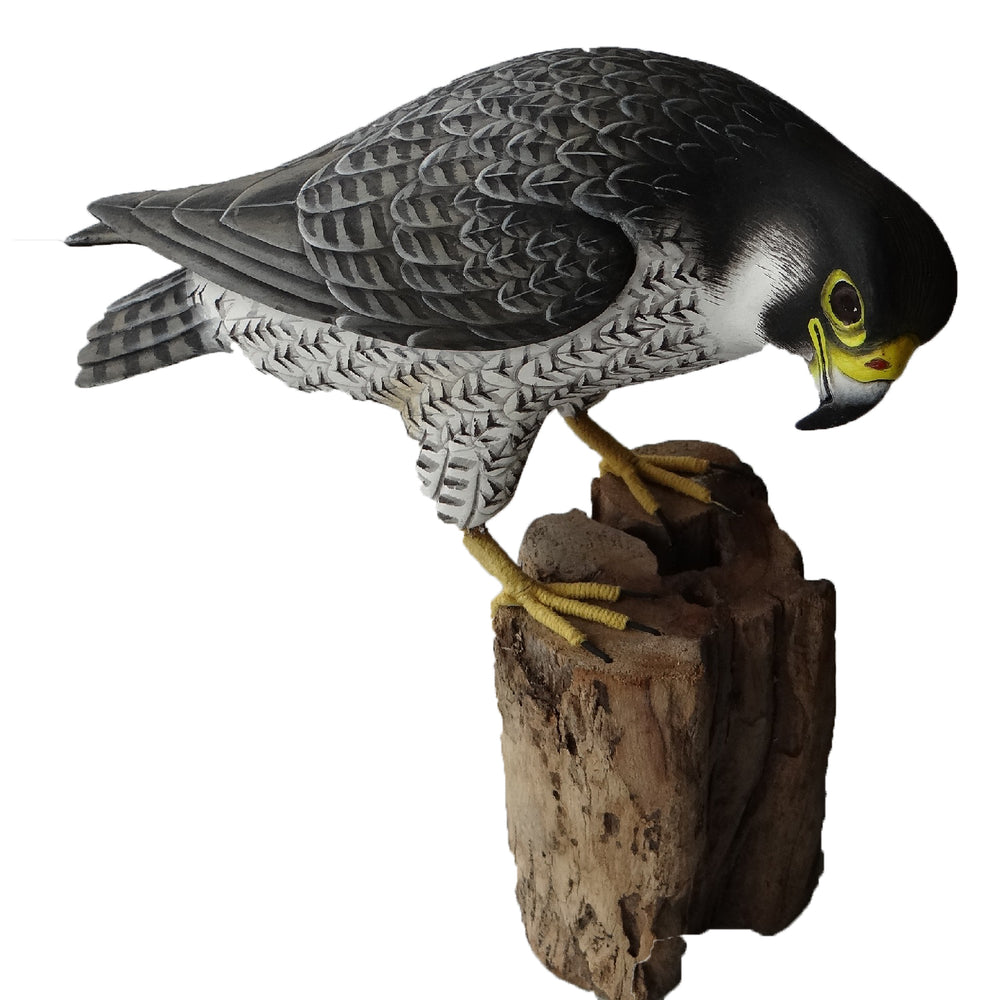 Wooden Peregrine Falcon Model