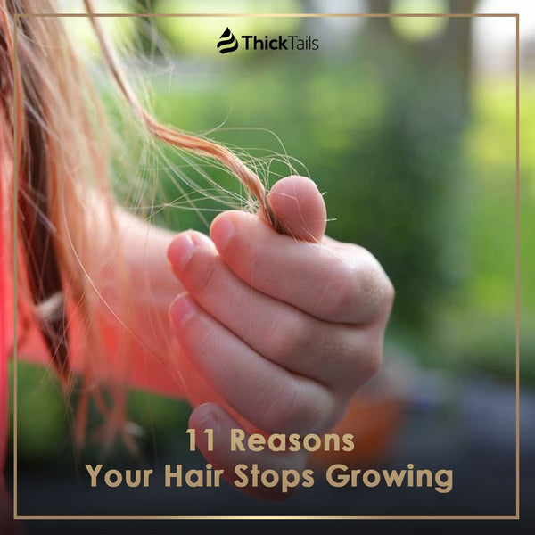 11 Reasons Your Hair Stops Growing | ThickTails